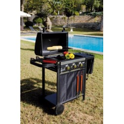 BARBACOA GAS HABITEX BONTEMPO 117