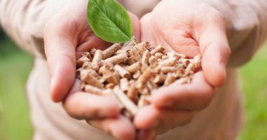Cómo funcionan las calderas de biomasa