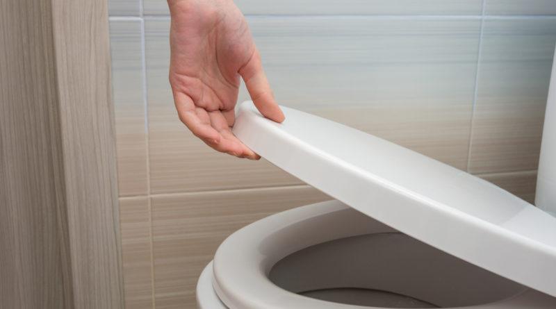 Tapas para el baño: cuál elegir